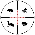 BPM Environmental Services - pest service