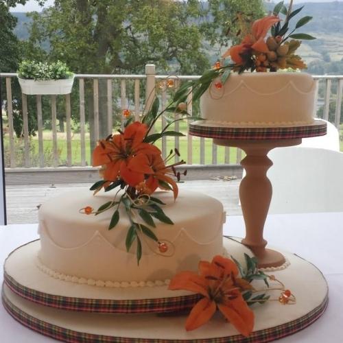 Wedding Cake Broomfield Co
