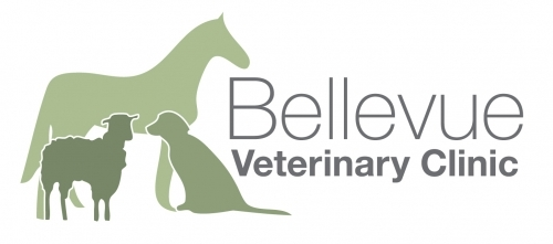 Bellevue Final Logo 2