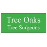 Tree Oaks