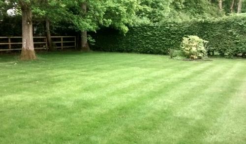 Ifold Customer Lawn
