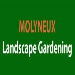 Molyneux