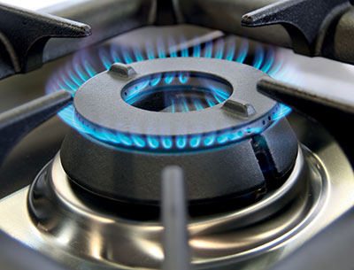 Professional Gas Safety Checks