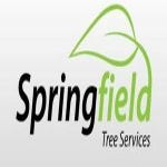 Springfield Tree Services