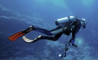 Dive Holidays