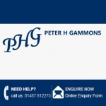 Peter H Gammons