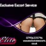 Exclusive Escorts - Escort Agency Kingston Upon Thames