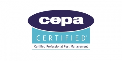 Pest Solutions Aberdeen Cepa Accredited Pest Control Company