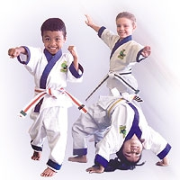 Little Dragons Karate 4-6 Years