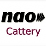 NAO Cattery