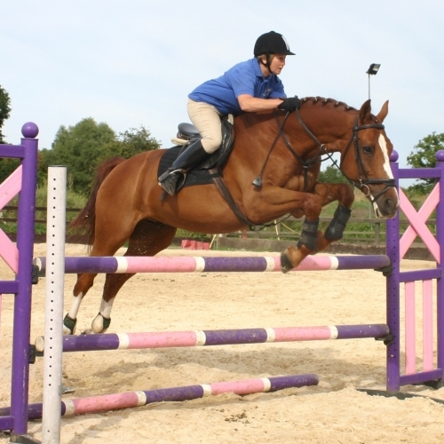 Jumping Lessons