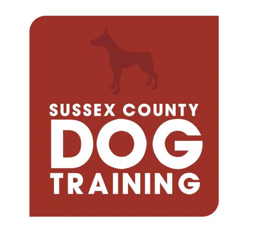 Sussex County Dog Training Doggie Day Care