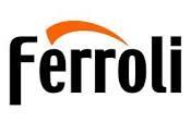 Ferrloi