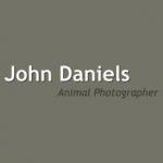 John Daniels Animal Photography