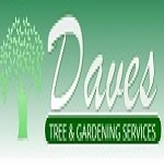 Daves Tree and Gardening Services