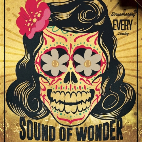 Dj Scooby S Sound Of Wonder Promo Poster