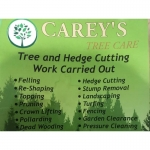 Carey's Tree Care & Landscape
