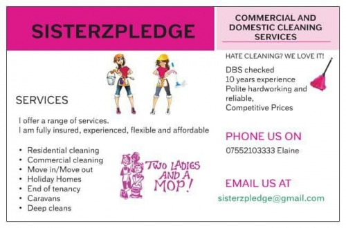Sisterzpledge cleaners