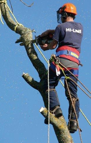 Hi Line Contractors Images 2