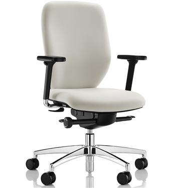 Office/Ergonomic Chair