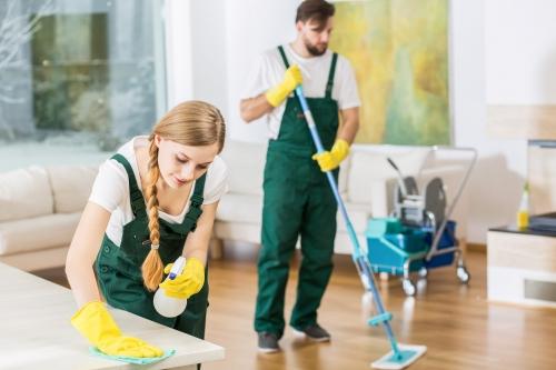 Domestic Regular Clean