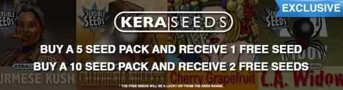 Kera seeds cannabis seeds offer