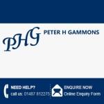 Peter H Gammons