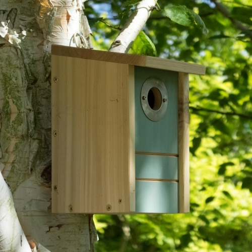 3 in 1 Nestbox - £22.50