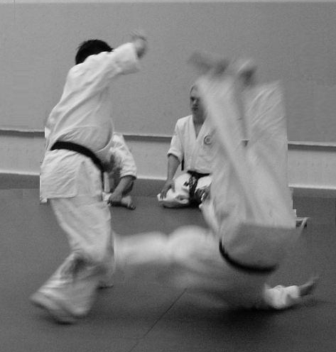 Aikido Lewes Brighton Shoreham Worthing 11180296 1 800x600