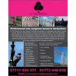 J T Tree Services Ltd