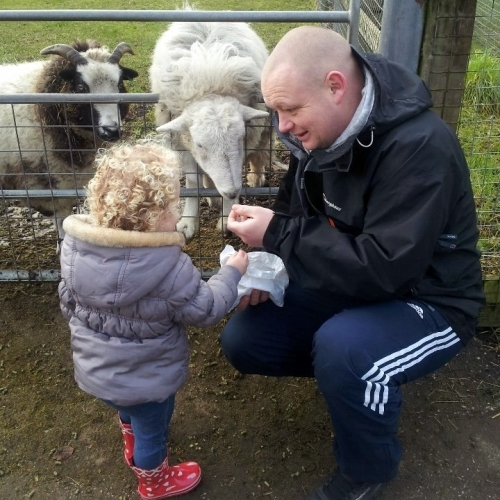 Meet and feed the animals