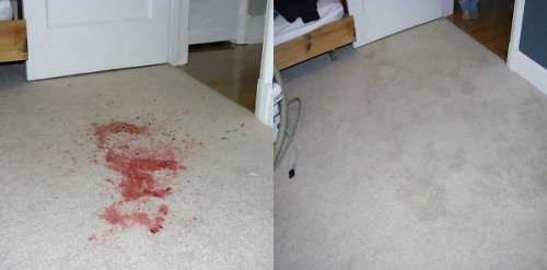 Scotch Gard Carpet Cleaning Before And After Results