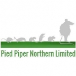 Pied Piper Northern Ltd
