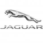 Taunton Jaguar