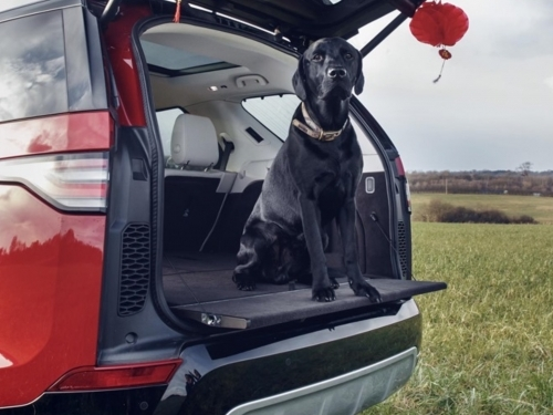 TOP CARS FOR DOG LOVERS WOOF WOOF !!!  CALL CARSAVE LEASING 0114 2582888