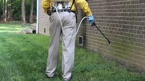 Pest Control Battersea
