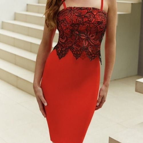 Red Lace Applique Pleated Bodycon Dress