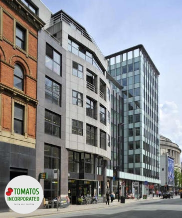 Tomatos Inc Limited Headquarter