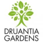 Druantia Gardens