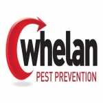 Whelan Pest Prevention Hampshire