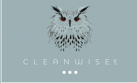 Cleanwise Card Front